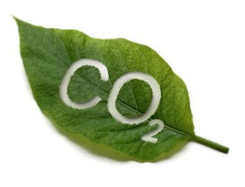 The Evolution of CO2 in Manufacturing