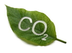 Co2 leaf
